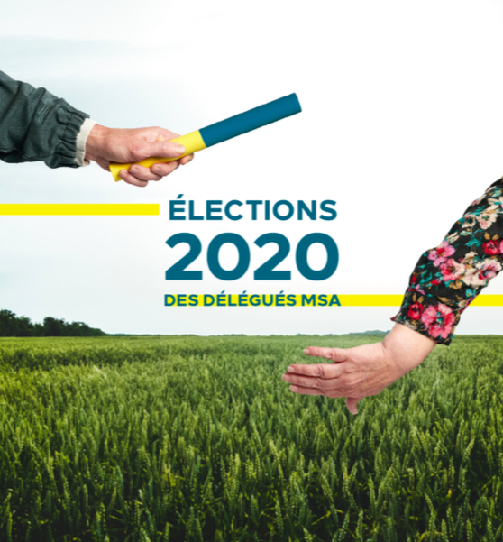 electionsmsa2020