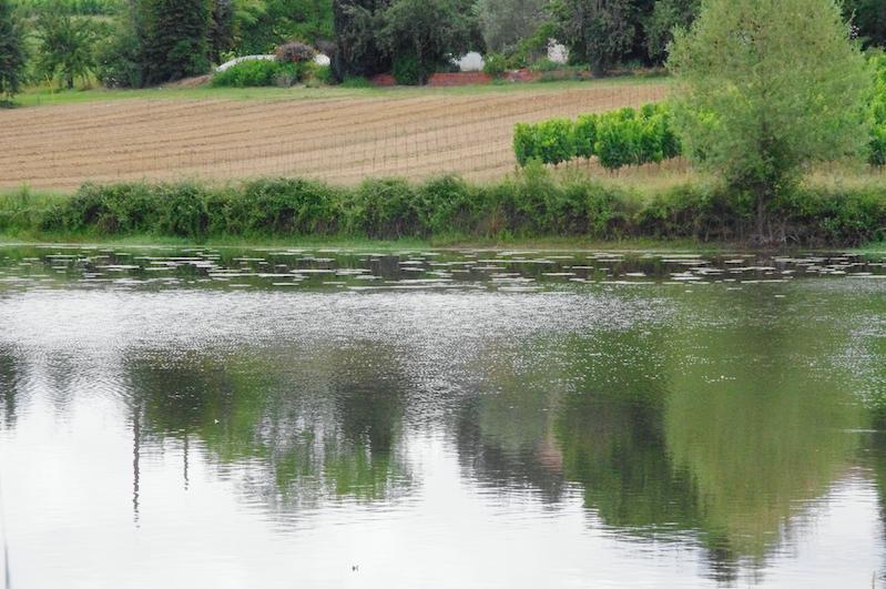 eau_10-07-2019